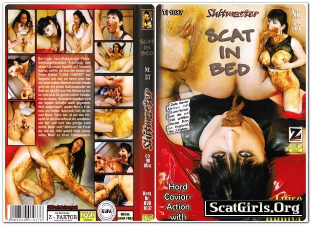 Shitmaster-37-Scat-in-Bed-Z-factor.jpg